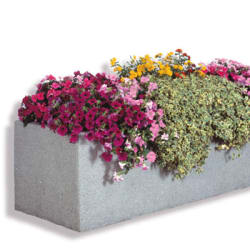 bellitalia acquario planter