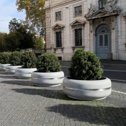 rhinoguard classica planters