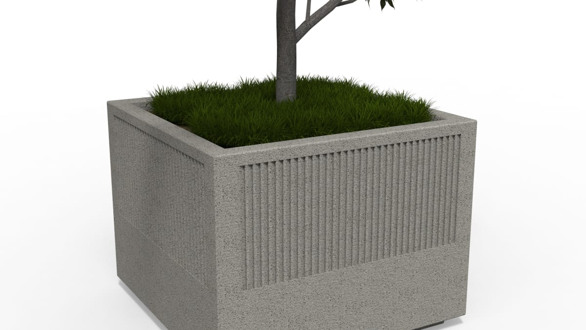 planter with a tree on a white background