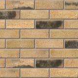 sandstock collection kensington stock frogged facing brick