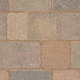 tegula - traditional