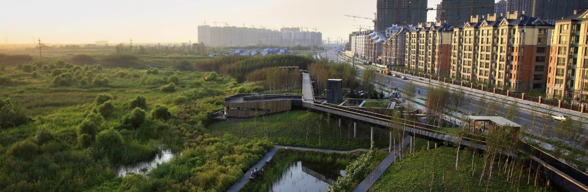 A large eco-system alongside a urban housing development