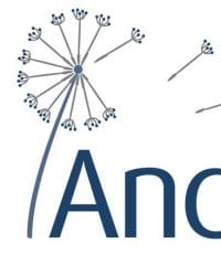 Andland Ltd