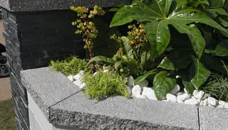 Argent® Coping / Edging