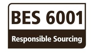 BES6001 logo