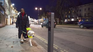 Guide dog walking past intelligent bollard.
