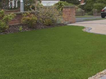 Marshalls Always Green Summer Lawn.