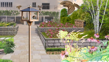 biodiverse garden design