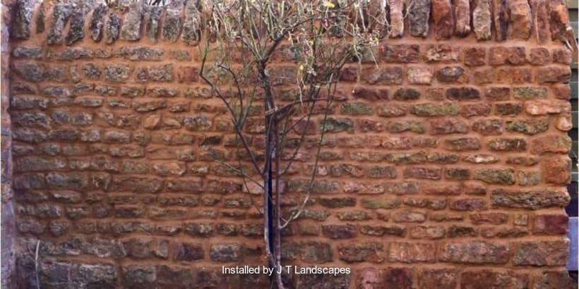 Walling-Specialist-R03245_2