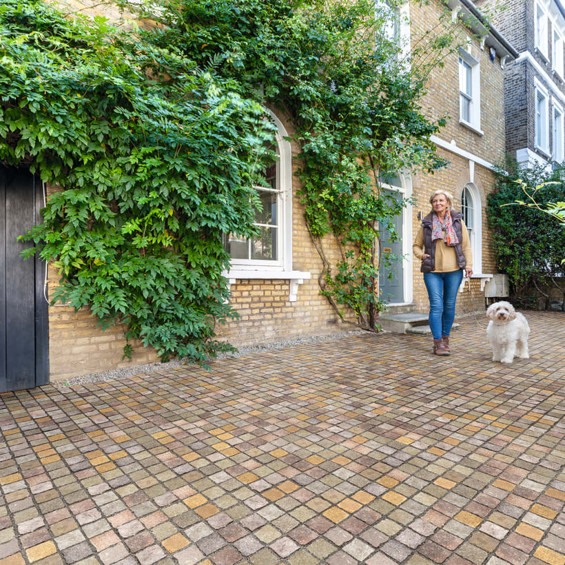 Cropped Porphyry Setts Imperial With Model