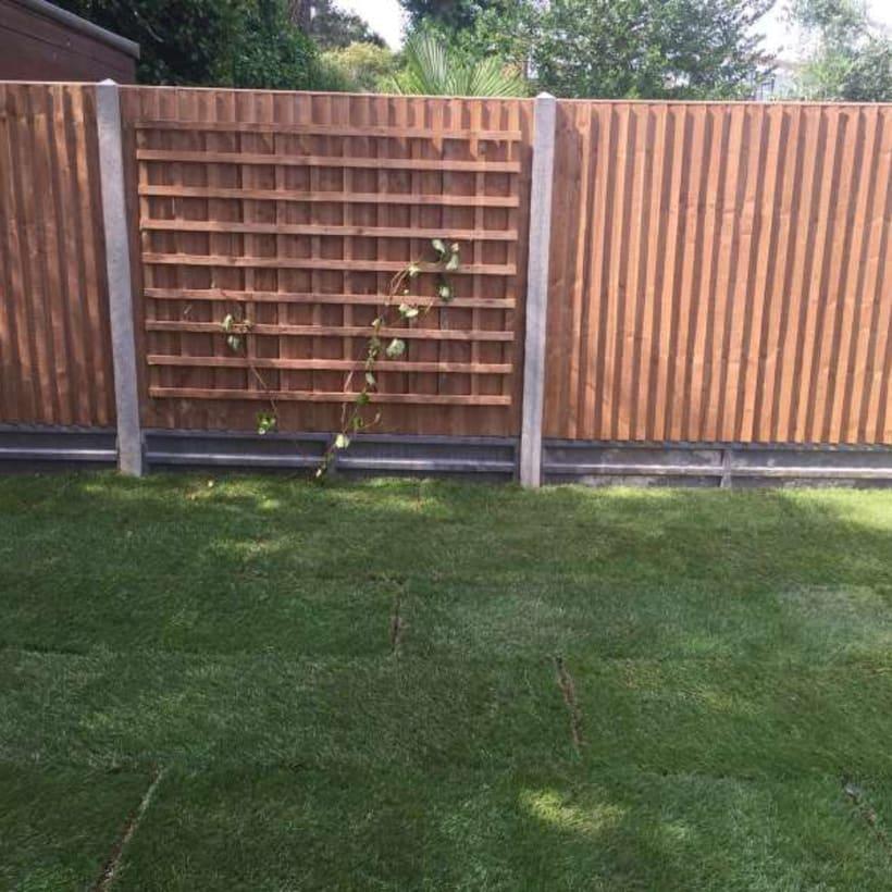 Fencing-Specialist-R02499_2