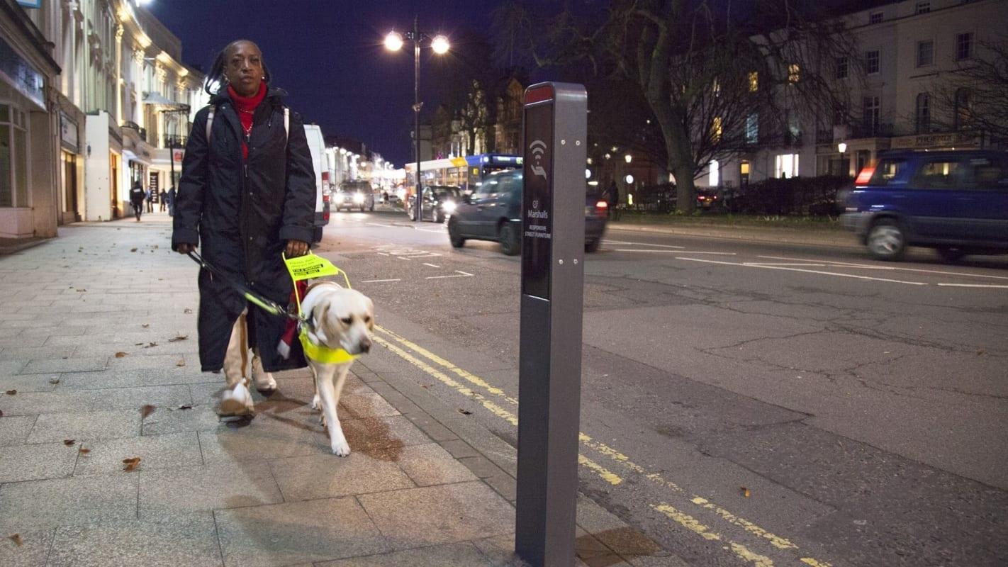 Intelligent street bollard assisting member of the public