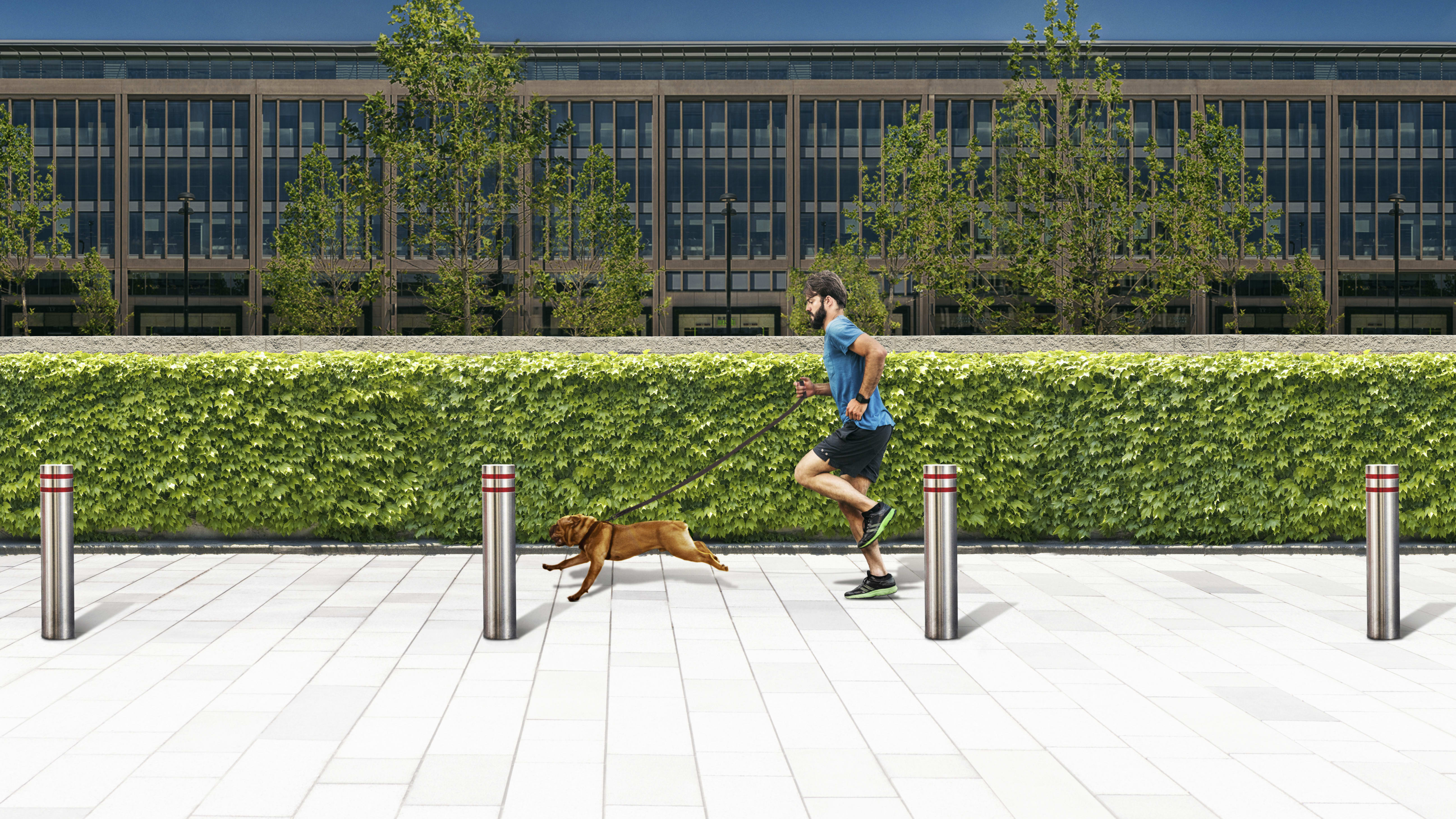 bollards on a pavement with a man running with a dog
