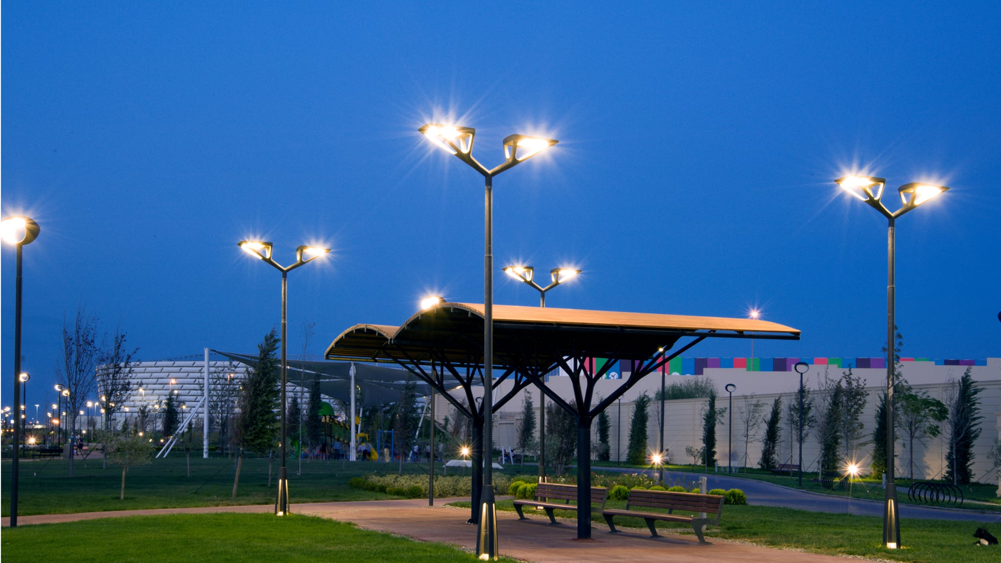 Light columns at night in public park