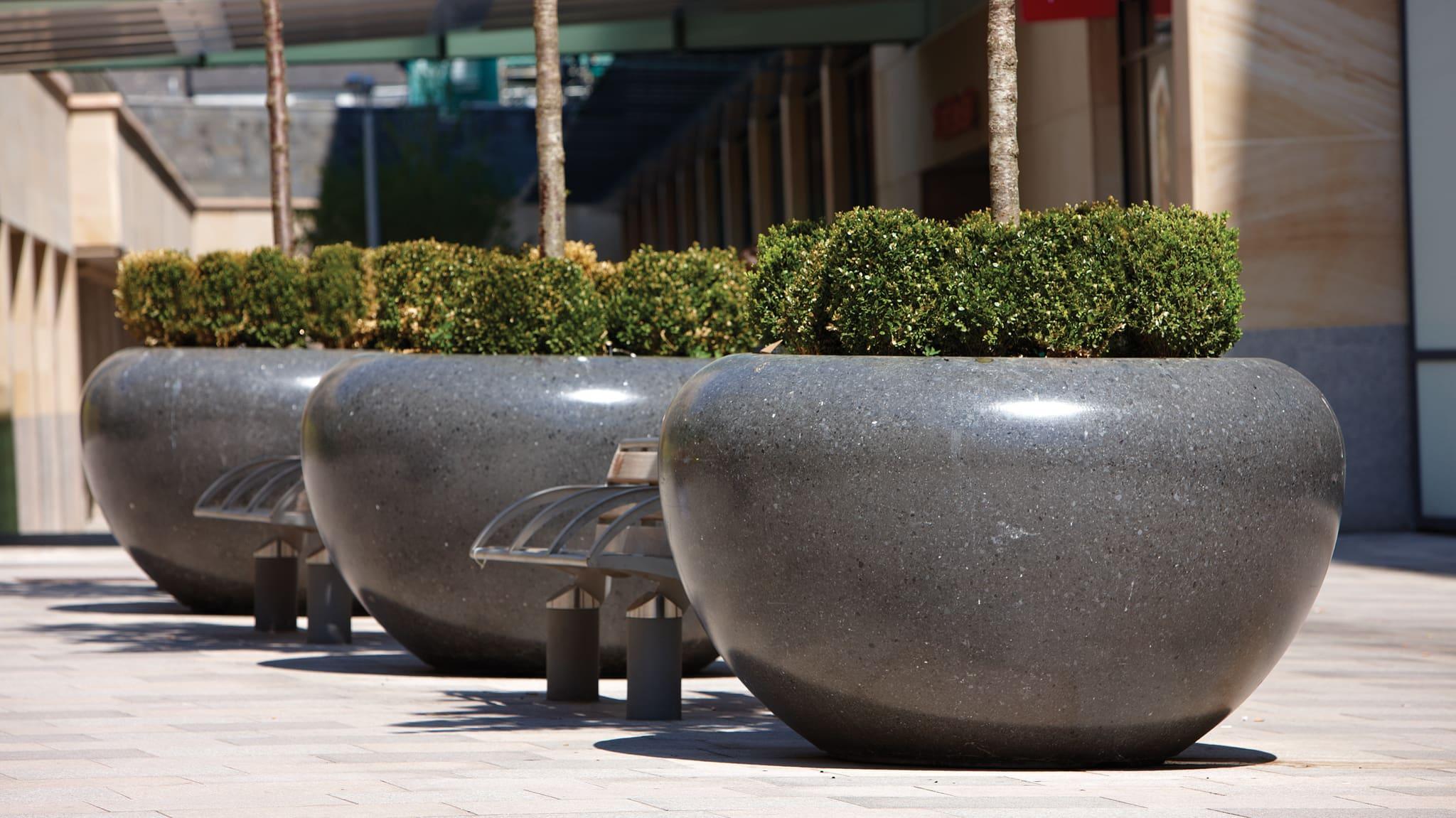 Planters in public walkway