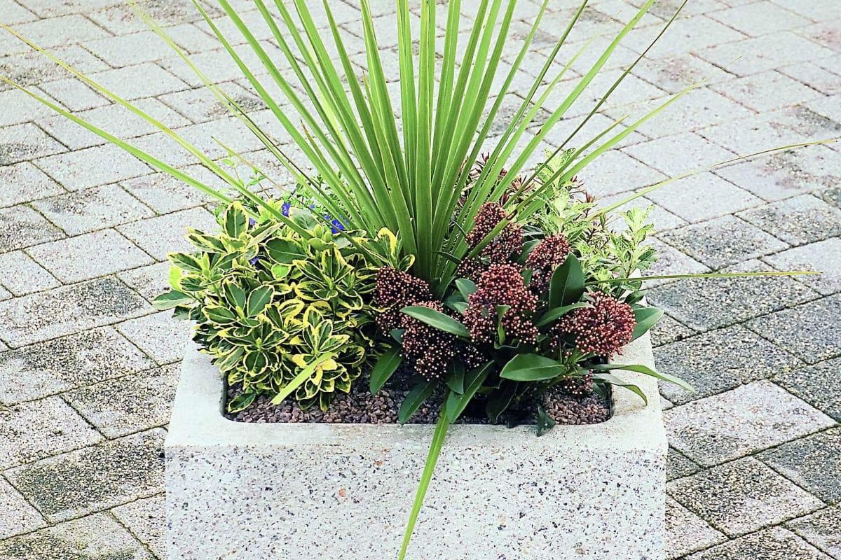 strada square planter