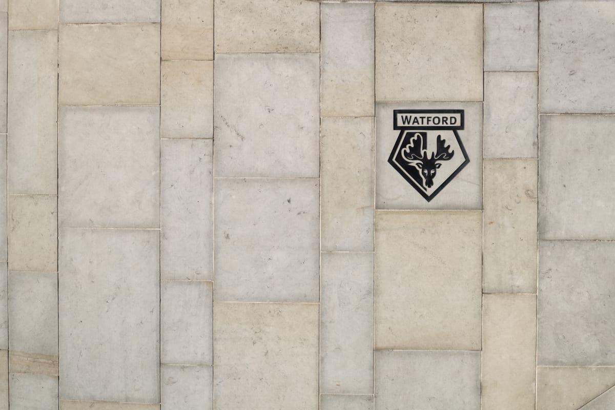 whitworth yorkstone - watford football club