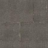 conservation priora - graphite