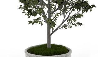 Sero Circular Planter