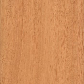 unstained hardwood