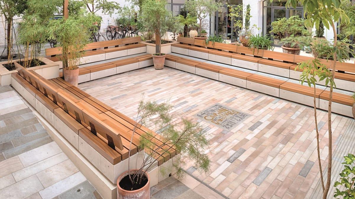 Metrolinia Bench and garden trees in open area.