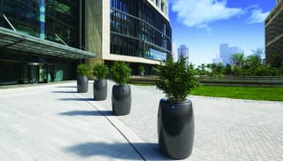 Orione planter outside an office building