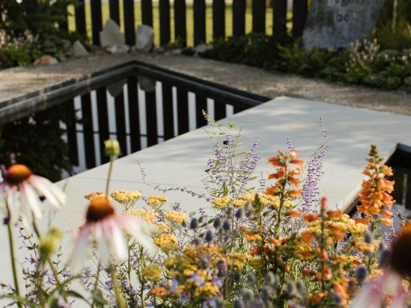 Planting in the Macmillan Legacy Garden