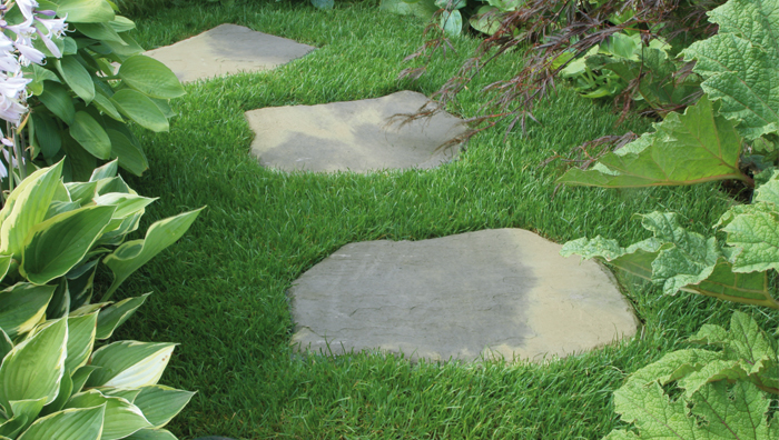 Grey stepping stones placed on top of grass.