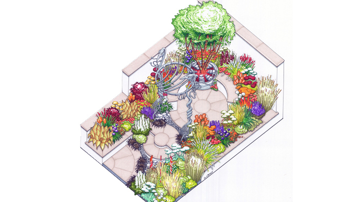 New horizons show garden at 2016 RHS Hampton Court Palace Flower Show