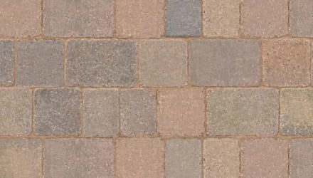 Prodcast Tegula In Traditional