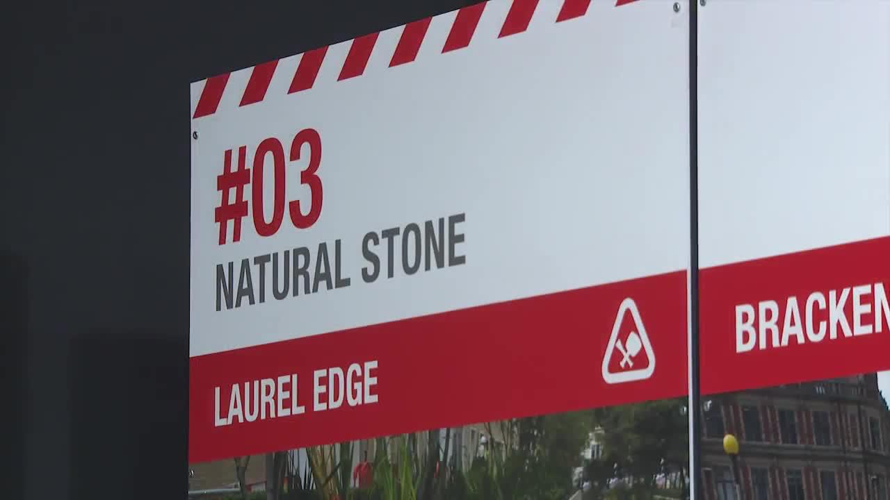 Cambrian Sandstone Natural Stone